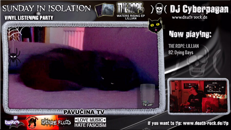 Sunday in Isolation #63 - 3